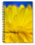 Yellow Petal Explosion Spiral Notebook