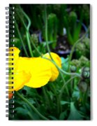 Yellow Poppy Xl Format Floral Photography Spiral Notebook