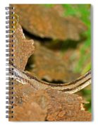 Yellow Rat Snakes Spiral Notebook