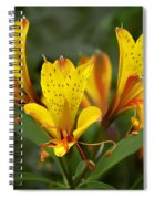 Yellow Red Flower Spiral Notebook