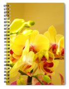 Yellow Red Orchid Flowers Art Prints Orchids Spiral Notebook