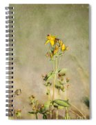Yellow-red Wildflower With Texture Spiral Notebook