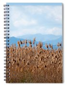 Yellow Reeds And Blue Mountains Spiral Notebook