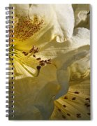 Yellow Rhododendron Spiral Notebook