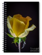 Yellow Rose 1 Spiral Notebook