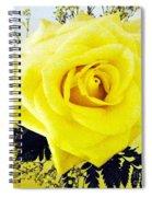 Yellow Rose 2 Spiral Notebook