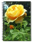 Yellow Rose And Buds Spiral Notebook