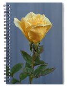 Yellow Rose Greeting Card Spiral Notebook