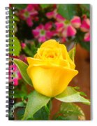 Yellow Rose In Bloom Spiral Notebook