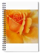 Yellow Rose Spiral Notebook
