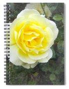 Yellow Rose Of Summer Spiral Notebook