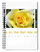 Yellow Rose On The First Day Of Summer Spiral Notebook