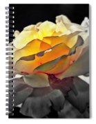Yellow Rose Series - ...but Soul Is Alive Spiral Notebook