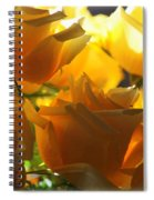 Yellow Roses And Light Spiral Notebook