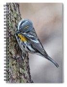 Yellow-rump Warbler Spiral Notebook