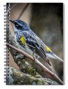 Yellow Rumped Warbler Spiral Notebook