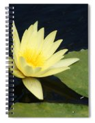 Yellow Saturating... Spiral Notebook