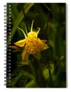 Yellow Splendor Spiral Notebook