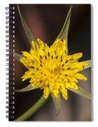 Yellow Star Flower Spiral Notebook