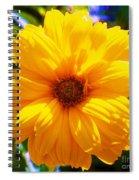Yellow Sunflower Spiral Notebook
