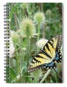 Yellow Swallowtail Butterfly Spiral Notebook