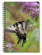 Yellow Swallowtail Butterfly Taking A Drink Spiral Notebook