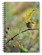 Yellow Throat In Late Summer Prairie Spiral Notebook