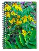 Yellow Tilt Spiral Notebook