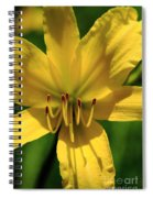 Yellow Too Lily Flower Art Spiral Notebook