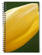 Yellow Tulip 1 Spiral Notebook