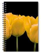 Yellow Tulip Triple Spiral Notebook