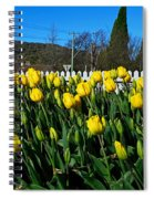 Yellow Tulips Before White Picket Fence Spiral Notebook
