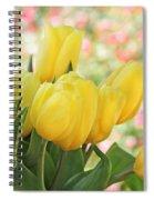 Yellow Tulips In The Spring Garden Spiral Notebook