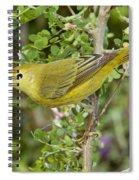 Yellow Warbler Hen Spiral Notebook