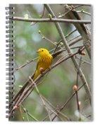 Yellow Warbler Spiral Notebook