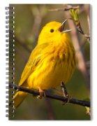 Yellow Warbler Singing Spiral Notebook