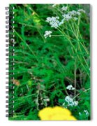 Yellow White 16169 Spiral Notebook