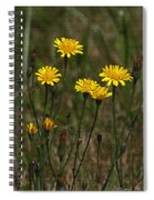 Yellow Wild Flowers Along The Chehalis Trail Spiral Notebook
