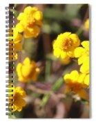 Yellow Wild Flowers Spiral Notebook