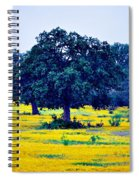 Yellow Wildflowers After Sunrise Spiral Notebook