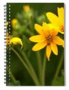 Yellow Wildflowers Spiral Notebook