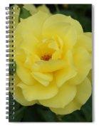 Yellow Wonder Rose...   # Spiral Notebook