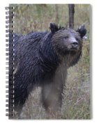 Yellowstone Grizzly Spiral Notebook