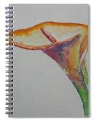 Yemanya Spiral Notebook
