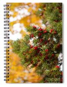 Taxus Baccata Or Yew Red Fruits On Twig  Spiral Notebook