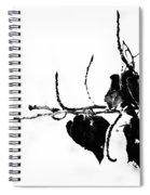 Yin Spiral Notebook