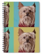 Yorkie Times Four Spiral Notebook