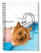 Yorkshire Terrier - This Is The Life Spiral Notebook