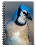 You Are All Wondering Why I Called This Meeting.. Spiral Notebook