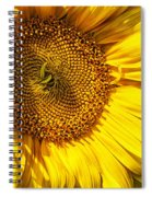 You Are My Sunshine Spiral Notebook